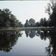Brush Creek Campground Lake